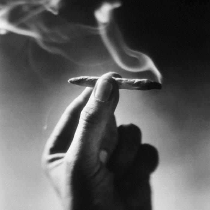 Celebrity pot smoking list