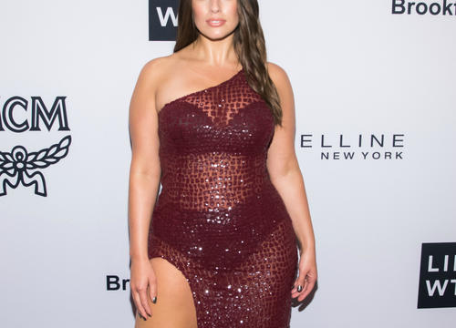 Ashley Graham Fired Back at an Instagram Troll Who Called Her a 'Fat Model'