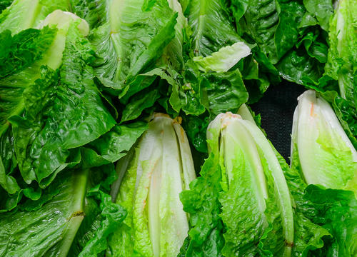 It's Finally Safe to Eat Romaine Lettuce Again