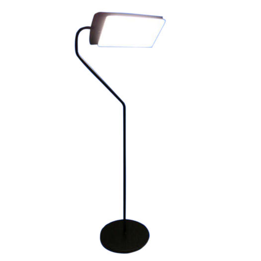 Northern Light Technology Flamingo Floor light therapy Lamp