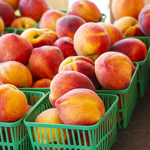 summer peaches at a market