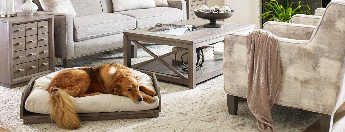 Shop more dog beds!