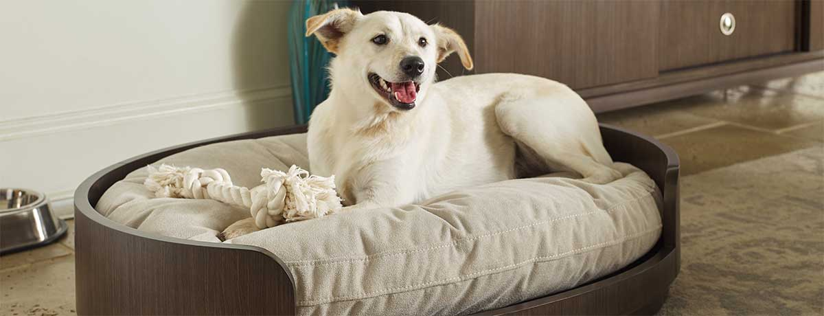 Shop more dog beds for your furry friend!